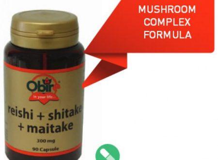 Maitake : benefici per la salute